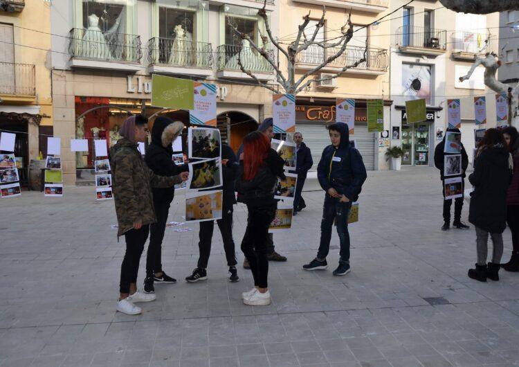 Mollerussa celebra el Dia de la Pau amb una exposició a la Plaça Major per combatre el virus de la violència