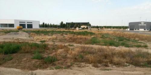 Els terrenys que acolliran el pàrquing de camions. FOTO: Ajuntament del Palau d'Anglesola.