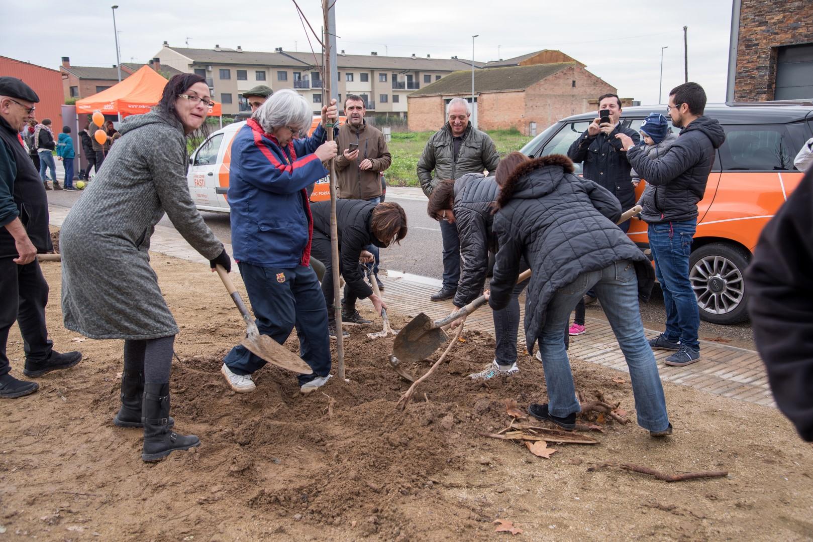 VII Festa del Medi Ambient. Plantada d'Arbres-Arces