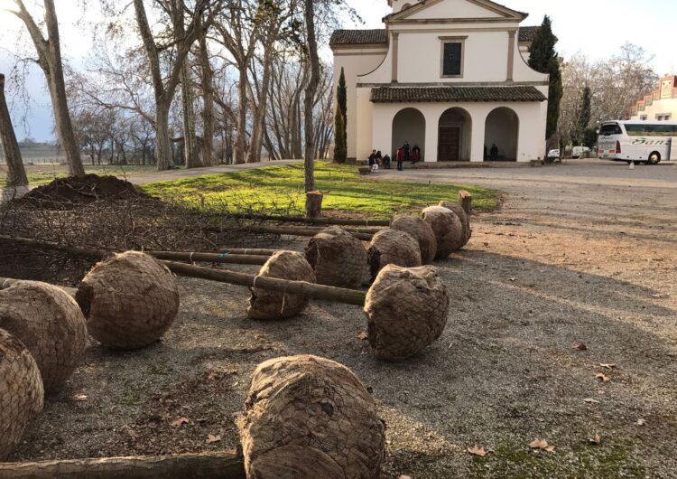 El Castell del Remei inicia el projecte d'enjardinament amb la plantació de 240 arbres