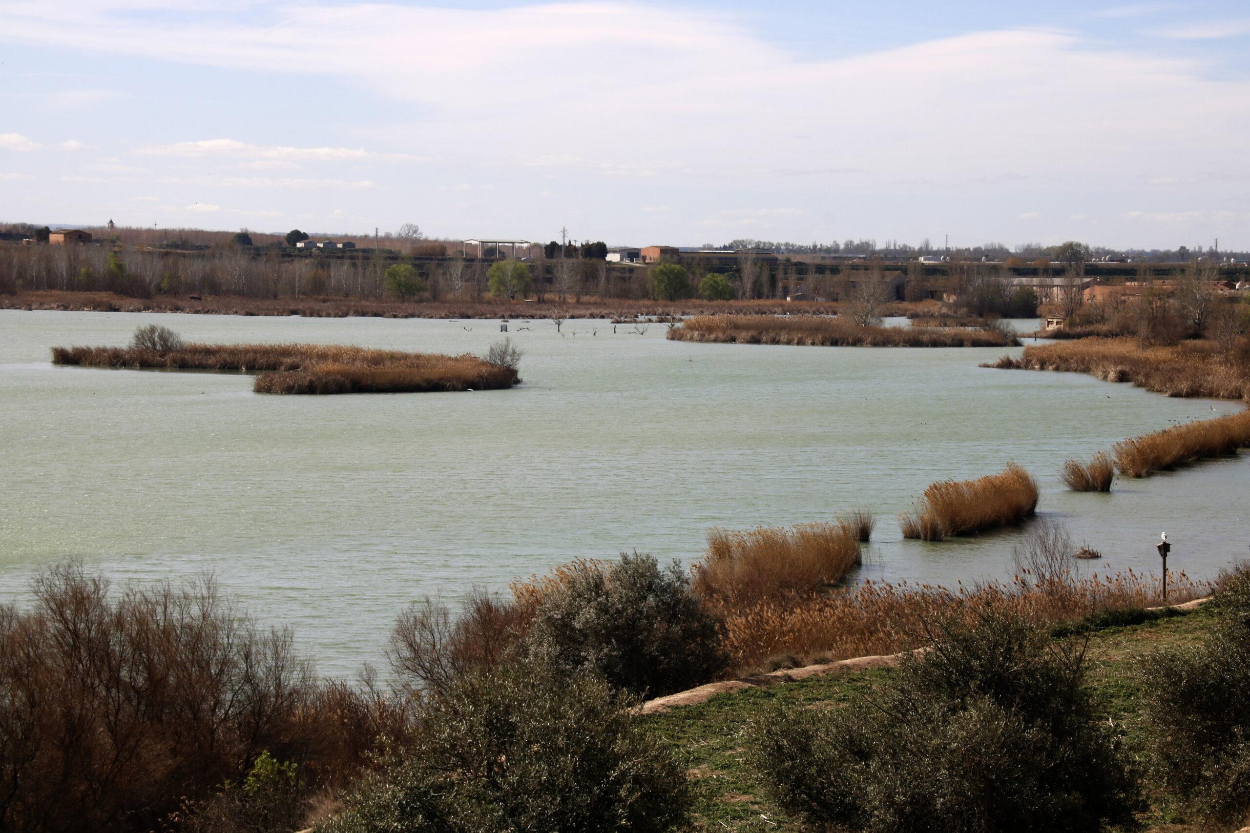 Pla general on es pot veure l'estany d'Ivars i Vila-sana i part de la seva làmina d'aigua, el 14 de març de 2019. (Horitzontal)