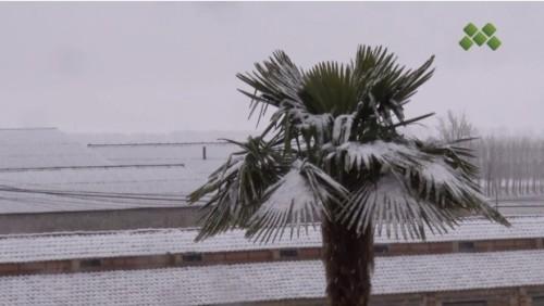 Un nou front podrà deixar precipitacions de neu als 200 metres a partir del migdia a les comarques de Ponent