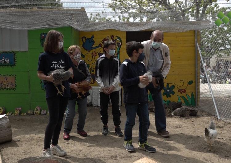 L'escola del Palau inaugura un galliner construït per diverses generacions del poble