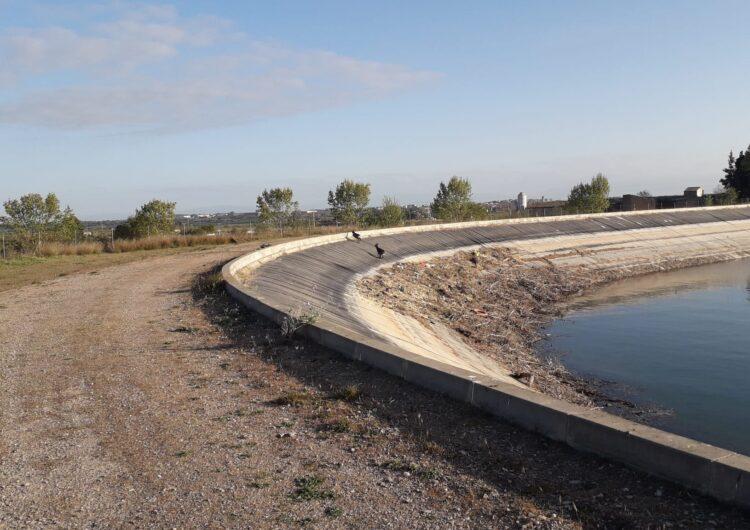 Sistemes salvavides al Canal d'Urgell per preservar la fauna salvatge