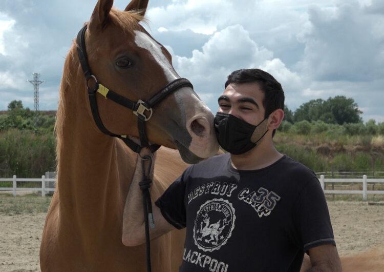 Amics dels cavalls
