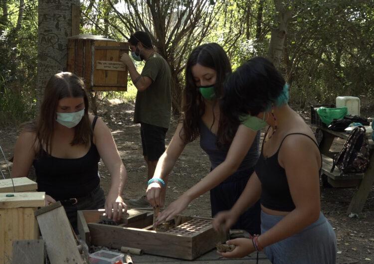"""Primer camp de treball per a adolescents a l'Estany: """"Ens permet cuidar el medi ambient i alliberar-nos"""""""