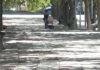 Mollerussa destinarà 100.000 euros aquest final d'any a reparar el paviment de carrers i aparcaments